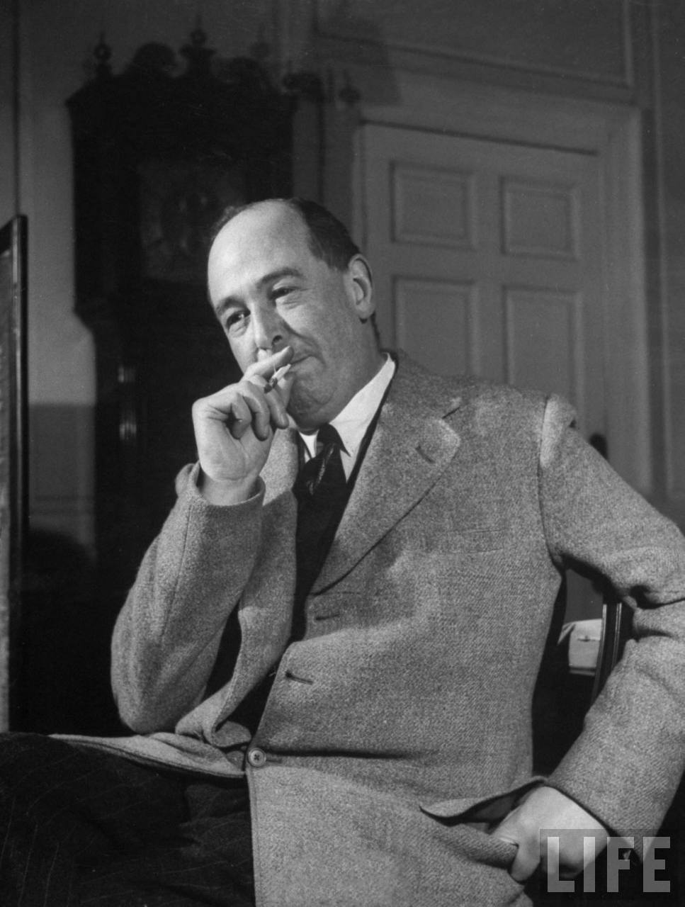 Best Cs Lewis Narnia Quotes